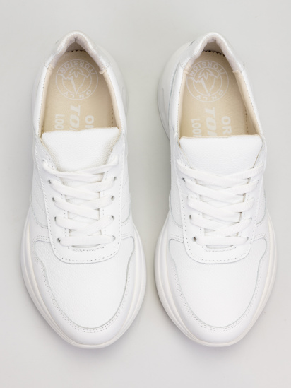 Кросівки для міста Torsion - фото