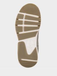 Grunberg  розмірна сітка взуття, 2017