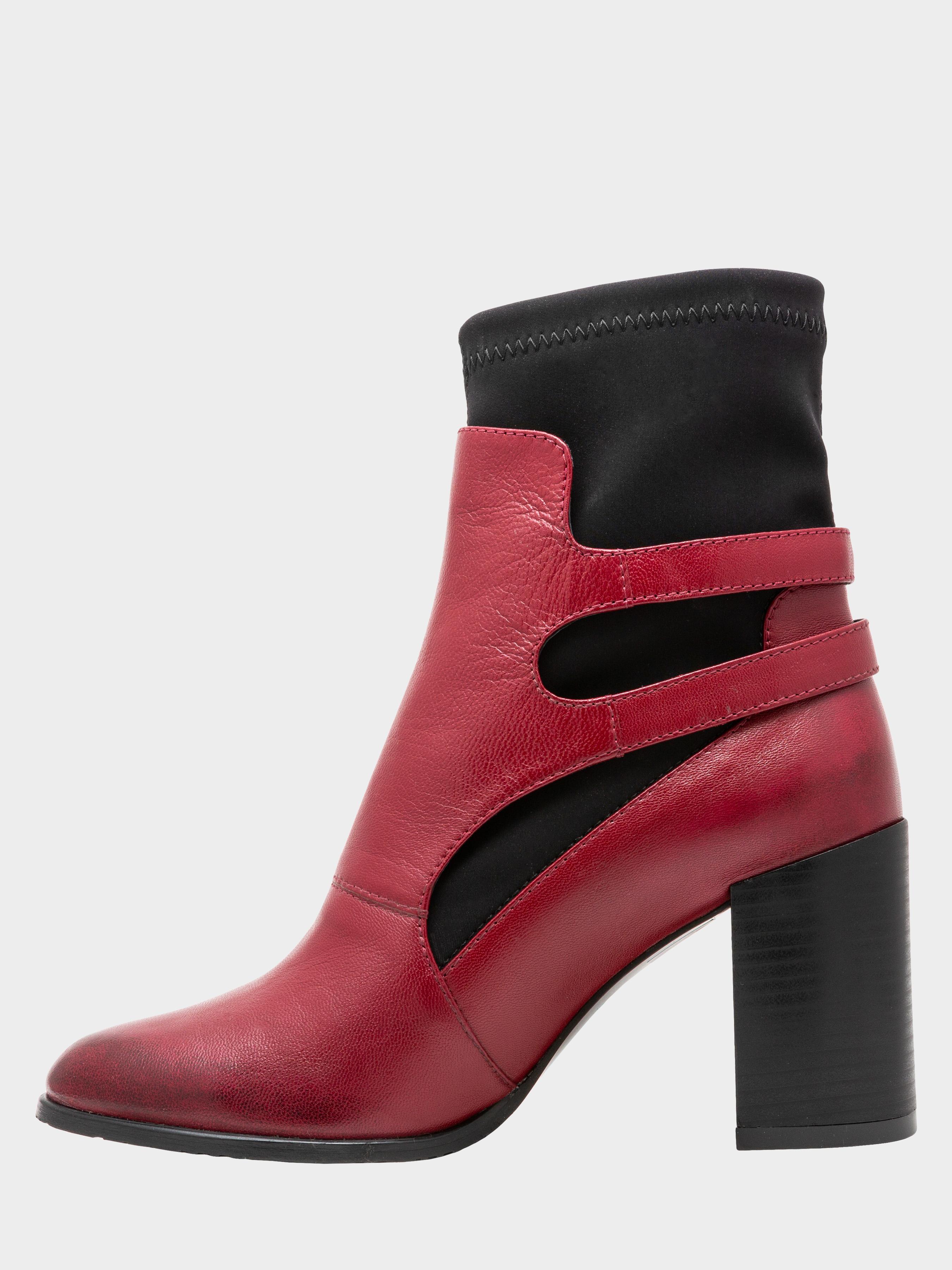 Ботинки для женщин Ботинки женские ENZO VERRATTI 18-9588bo размерная сетка обуви, 2017