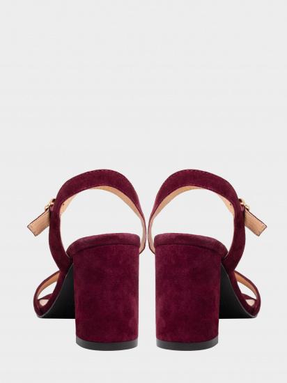 Босоніжки  жіночі Enzo Verratti 18-9606bo замовити, 2017