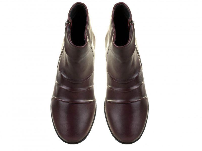 Ботинки для женщин Salamander 3F12 модная обувь, 2017