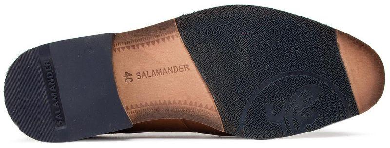 Полуботинки для мужчин Salamander 3O32 купить обувь, 2017