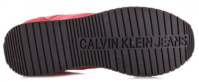 Кросівки  для жінок Calvin Klein Jeans R8069/TMT фото, купити, 2017