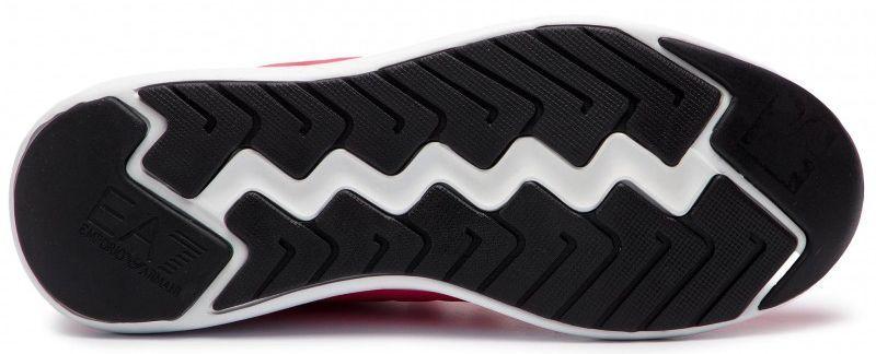 Кросівки  жіночі EA7 X8X024-XCC06-00029 купити взуття, 2017