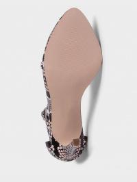 Босоніжки  жіночі Steve Madden SM11000932 MULTI SNAKE модне взуття, 2017