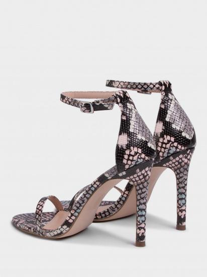 Босоніжки  жіночі Steve Madden SM11000932 MULTI SNAKE брендове взуття, 2017