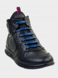 Collonil Шнурки  модель Shoeps Navy Blue , 2017