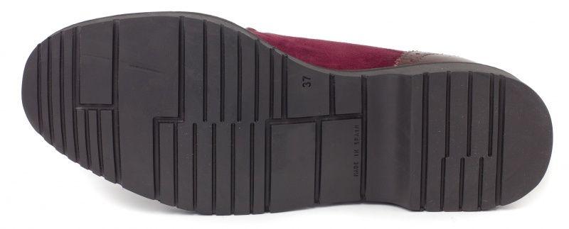 BRASKA Туфли  модель BS2334, фото, intertop