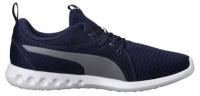 Кроссовки для мужчин PUMA Carson 2 CI90 , 2017