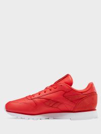 Кросівки  для жінок Reebok CL LTHR EF3255 розміри взуття, 2017