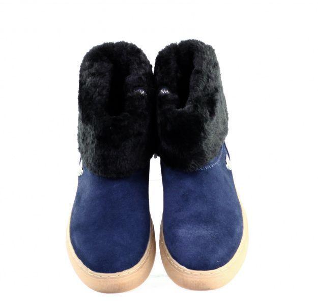 Ботинки женские Armani Jeans EF278 купить обувь, 2017