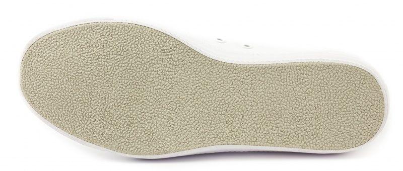 Lacoste Кеды  модель EK20, фото, intertop