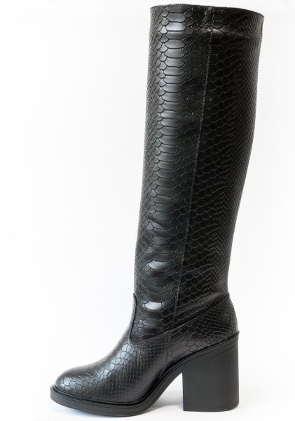 Сапоги для женщин Gino Figini GF-17356-02 купить обувь, 2017