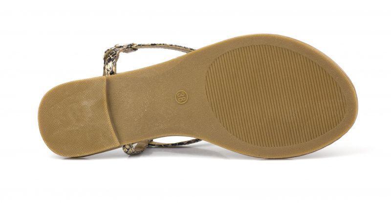 Сандалии для женщин Plato SHL JC2797 брендовая обувь, 2017