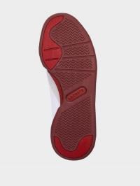 Кроссовки для женщин Lacoste LL209 стоимость, 2017