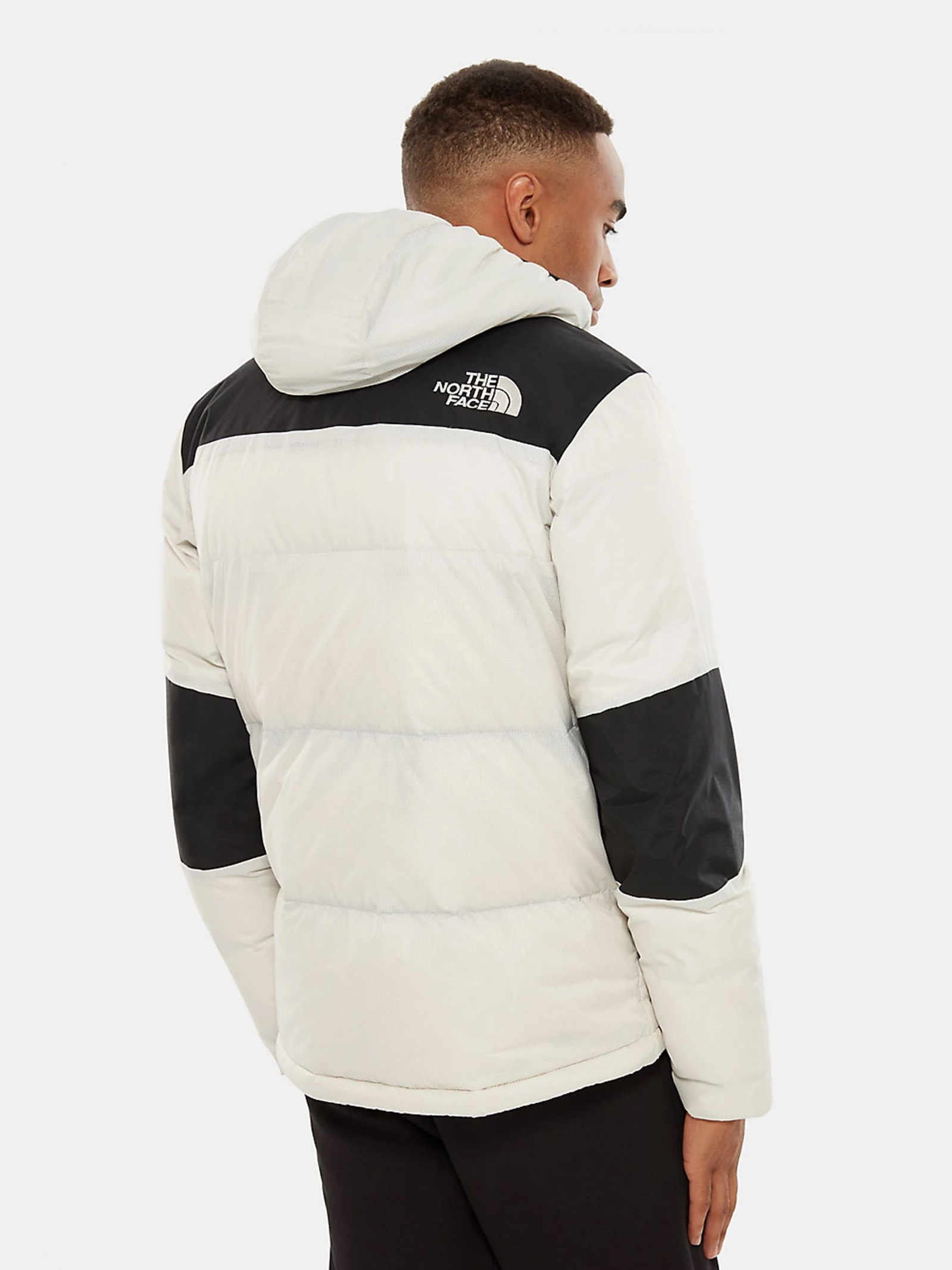 The North Face Куртка чоловічі модель NF0A3OEDQG21 якість, 2017