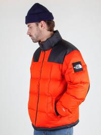 Куртка мужские The North Face модель N21101 цена, 2017