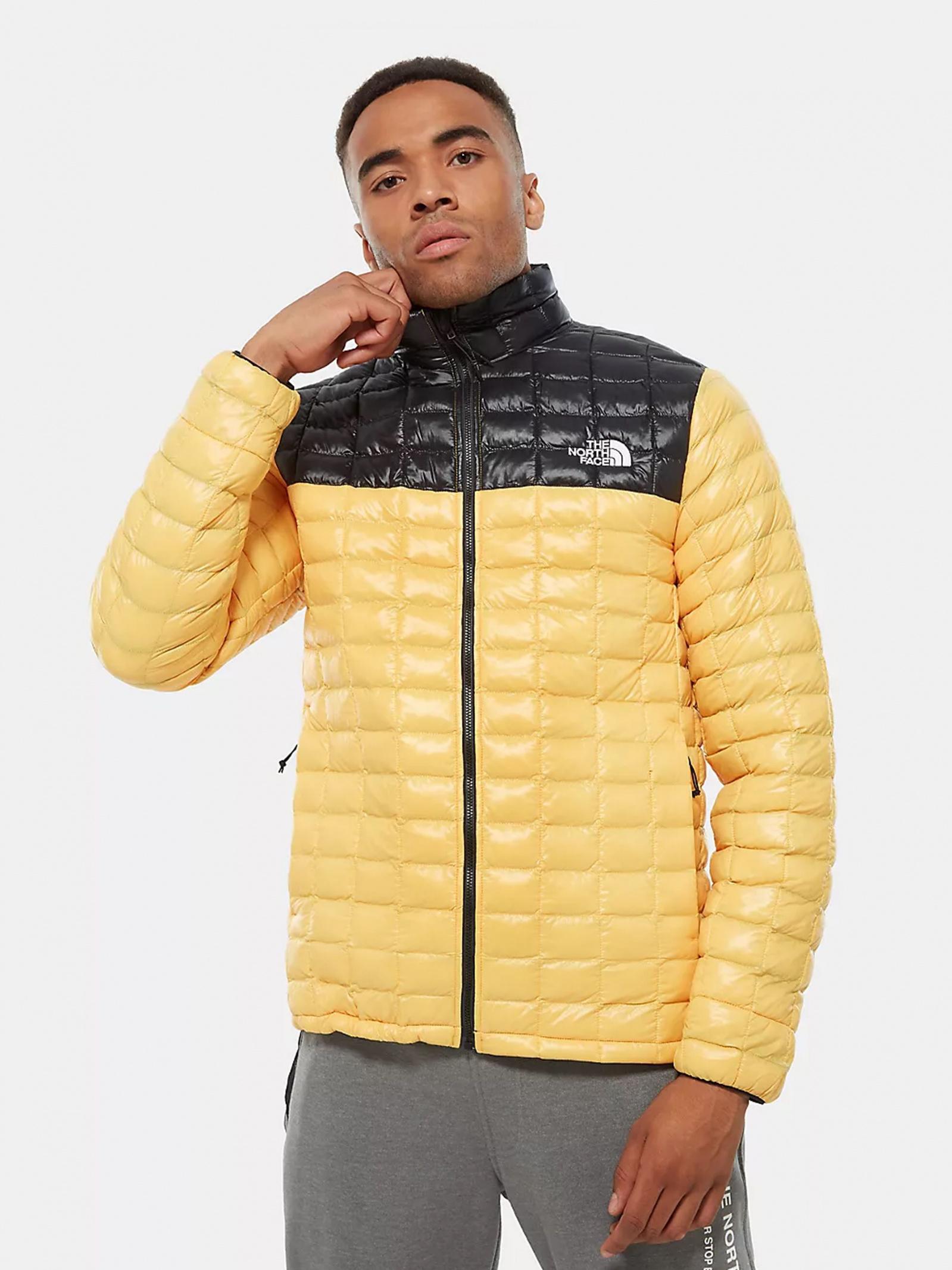 The North Face Куртка чоловічі модель NF0A3Y3NLR01 , 2017