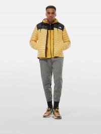 The North Face Куртка чоловічі модель NF0A3Y3NLR01 купити, 2017