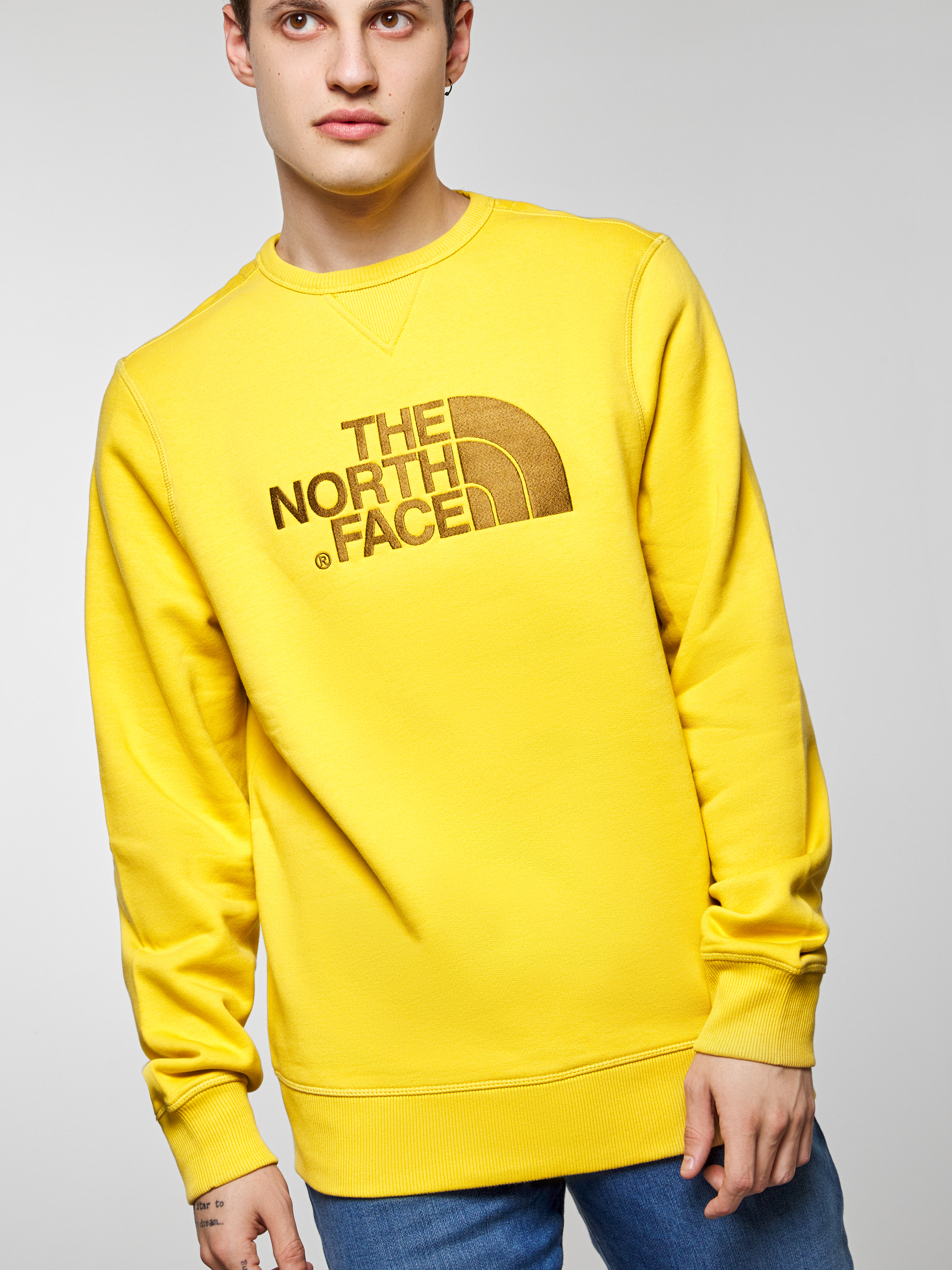 Кофты и свитера мужские The North Face модель NF0A2ZWRZBJ1 цена, 2017