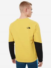 Кофты и свитера мужские The North Face модель N21301 купить, 2017