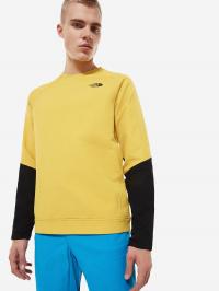 Кофты и свитера мужские The North Face модель N21301 приобрести, 2017