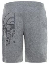 Шорты мужские The North Face модель N2298 качество, 2017