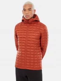 The North Face Куртка чоловічі модель NF0A3Y3MJQ31 , 2017