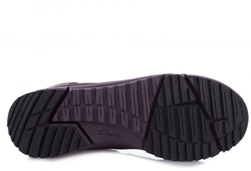 Черевики  жіночі Clarks Tri Fern GTX 2613-8102 купити в Iнтертоп, 2017