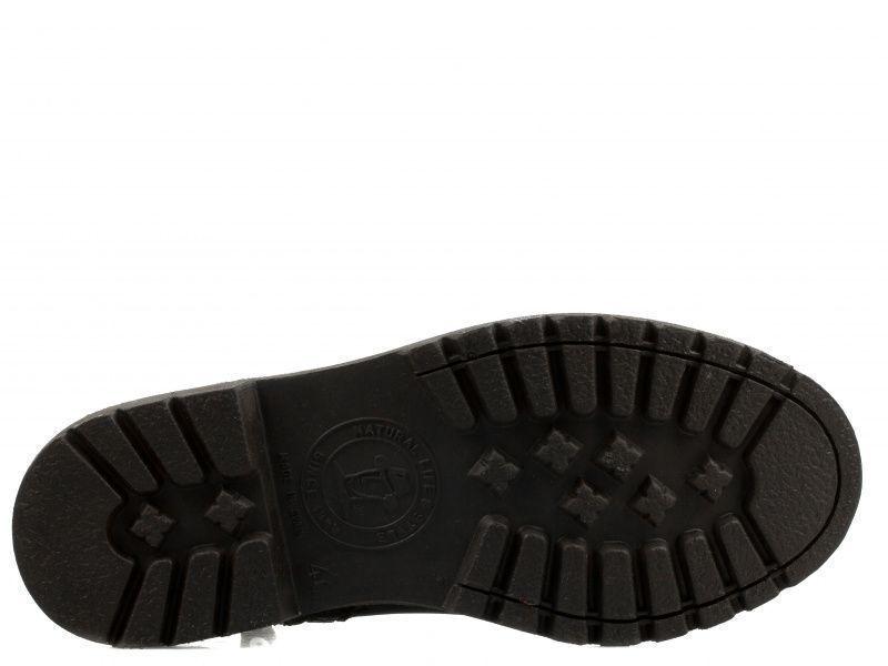 Ботинки мужские Panama Jack PX90 купить обувь, 2017