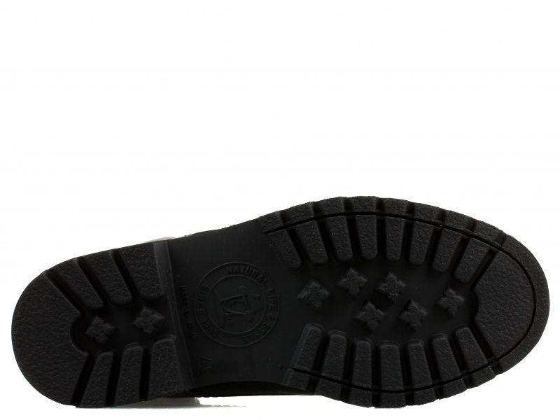 Ботинки мужские Panama Jack PX94 купить обувь, 2017