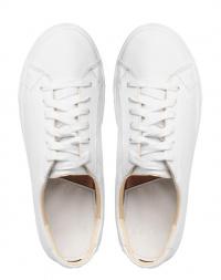 Кеды для женщин Grace SN3.1.000000329 брендовая обувь, 2017
