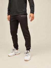 Штаны спортивные мужские Tommy Hilfiger модель S20S200184-099 цена, 2017