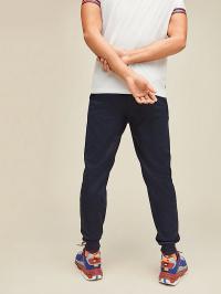 Tommy Hilfiger Штани спортивні чоловічі модель S20S200328-DU5 характеристики, 2017