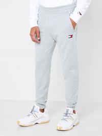 Штаны спортивные мужские Tommy Hilfiger модель TC1563 купить, 2017