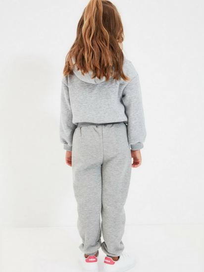 Спортивні штани Trendyol модель TKDAW22EA0117/Gri — фото 2 - INTERTOP
