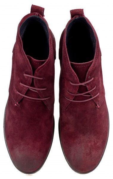 Tommy Hilfiger Ботинки  модель TD775 размерная сетка обуви, 2017