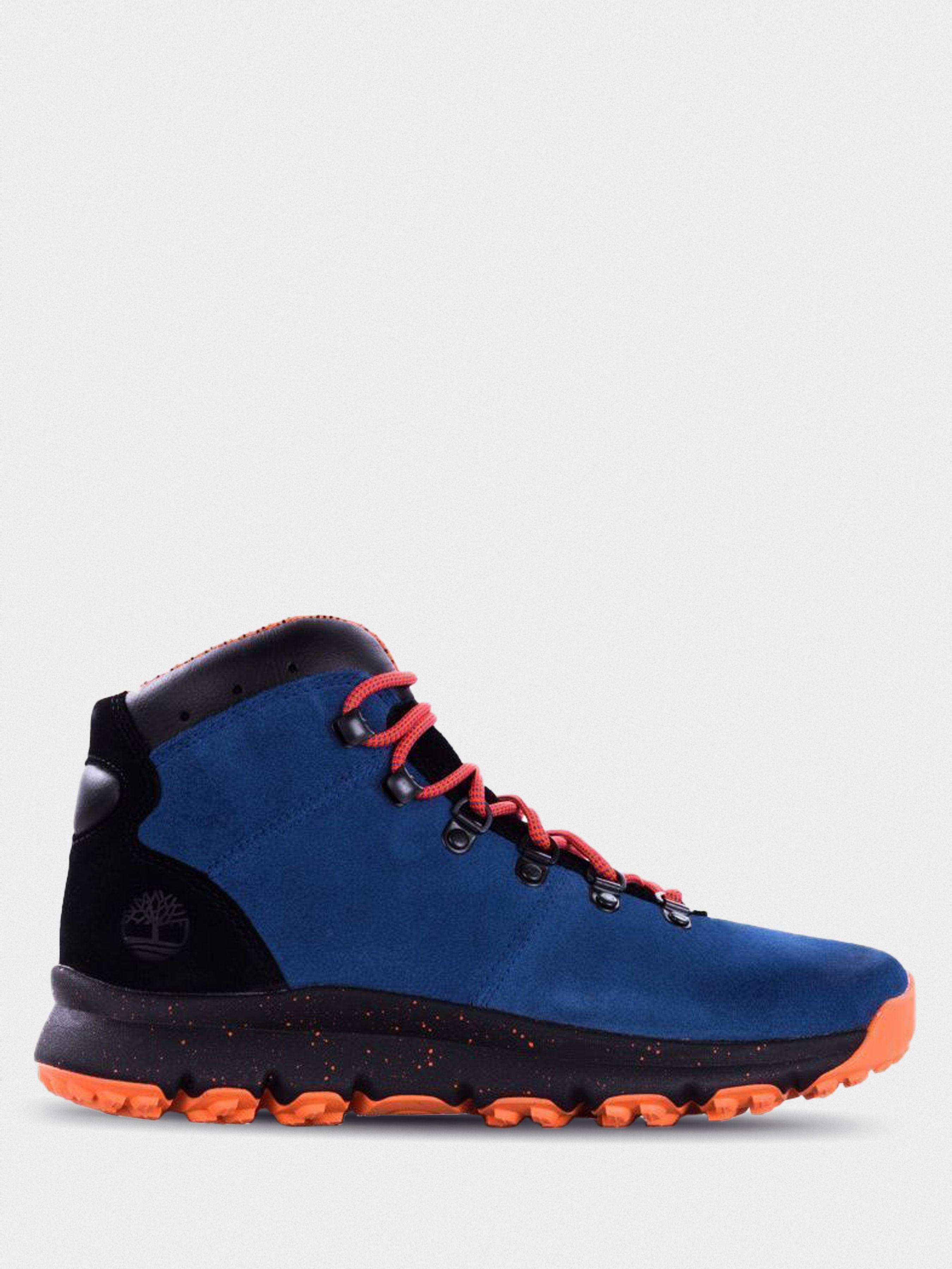 Купить Ботинки мужские Timberland World Hiker TF3836, Многоцветный