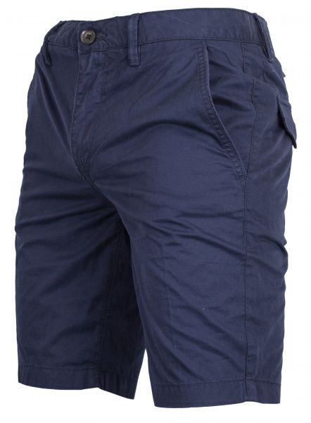 Купить Шорты мужские модель TH5436, Timberland, Синий
