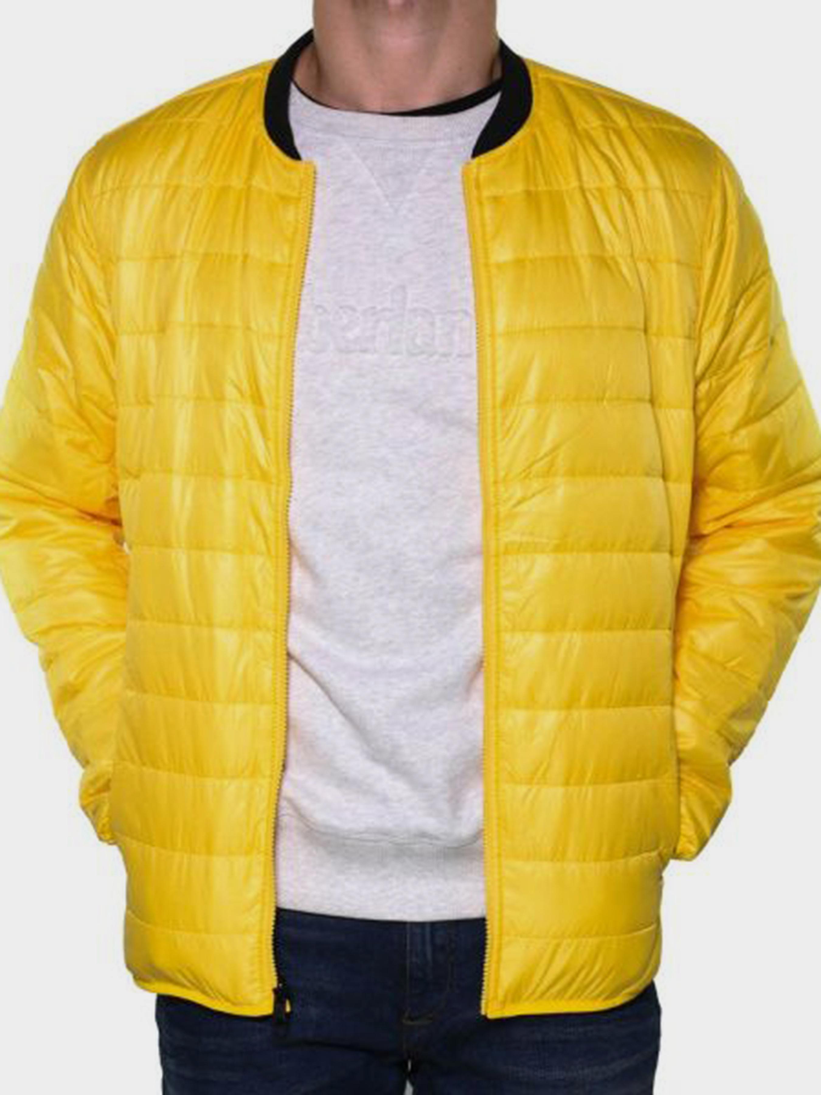 Купить Куртка мужские модель TH5454, Timberland, Синий