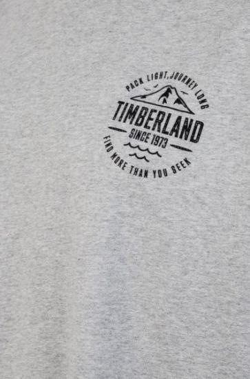 Футболка Timberland модель TB0A1O6C052 — фото 3 - INTERTOP