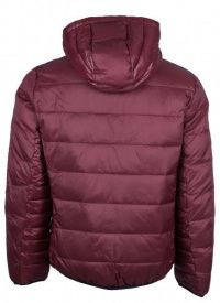 Куртка мужские Armani Exchange модель WH1767 приобрести, 2017