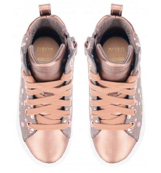 Ботинки для детей Geox J KALISPERA GIRL XK5701 продажа, 2017