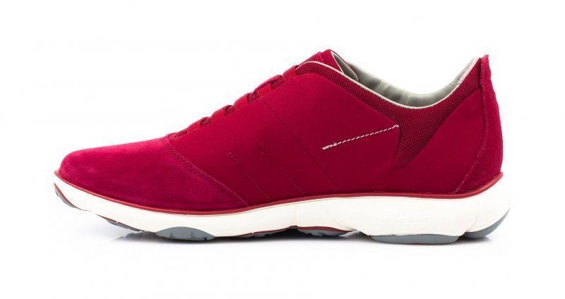 Geox Кроссовки  модель XM1404 размеры обуви, 2017