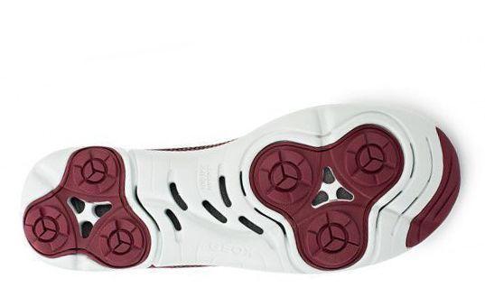 Кроссовки для мужчин Geox U NEBULA X A - TESS. A MAGLIA XM1858 примерка, 2017