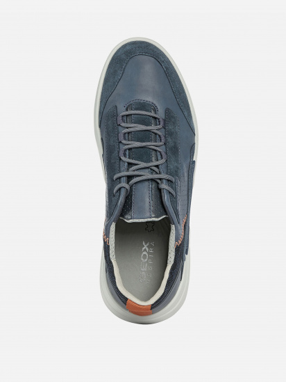 Кросівки для міста Geox Smoother модель U04AFA-08522-C4007 — фото 4 - INTERTOP