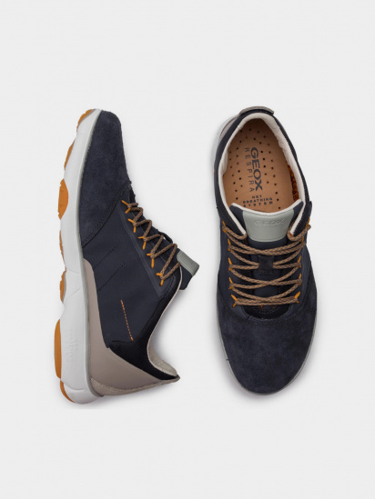 Кросівки для міста Geox модель U94D7C-01122-C4K5Y — фото 3 - INTERTOP