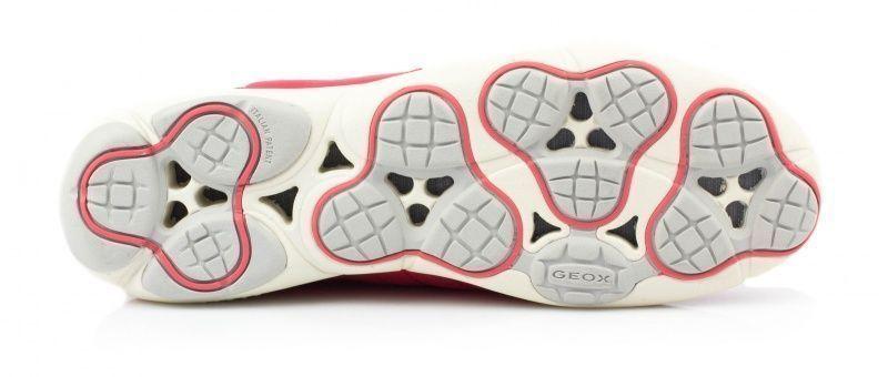 Кросівки  для жінок Geox NEBULA D621EC-01122-C7008 брендове взуття, 2017