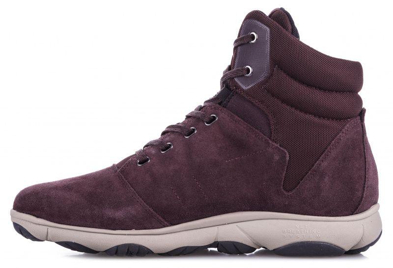 Ботинки для женщин Geox D NEBULA 4 X 4 B ABX XW3208 цена обуви, 2017