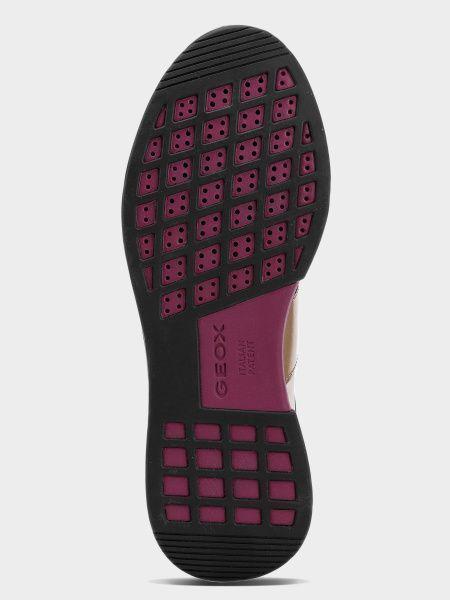 Кроссовки женские Geox D SUZZIE XW3718 купить обувь, 2017